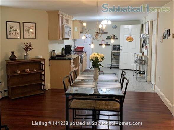 Garden level studio apartment (2 rooms) Home Rental in Somerville 2 - thumbnail