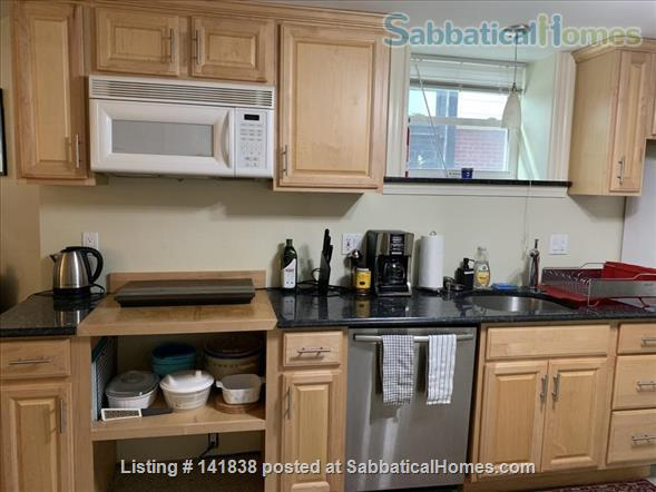Garden level studio apartment (2 rooms) Home Rental in Somerville 4 - thumbnail
