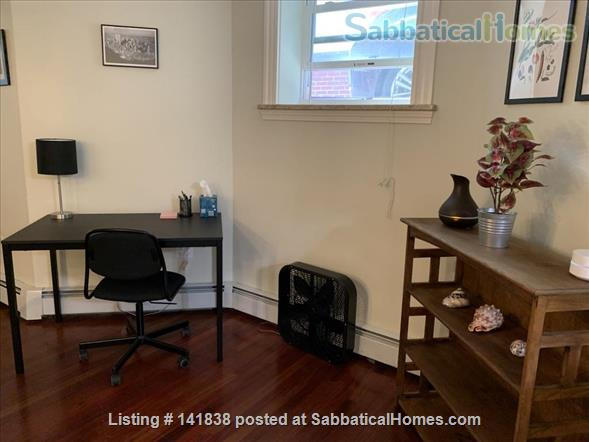 Garden level studio apartment (2 rooms) Home Rental in Somerville 5 - thumbnail