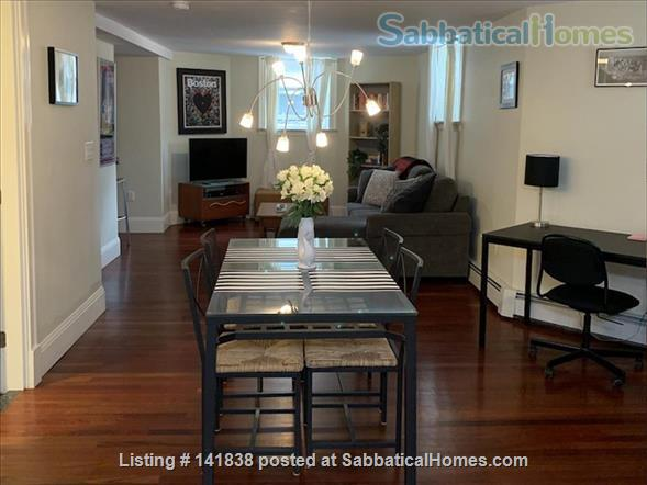 Garden level studio apartment (2 rooms) Home Rental in Somerville 6 - thumbnail