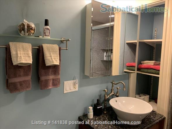 Garden level studio apartment (2 rooms) Home Rental in Somerville 8 - thumbnail