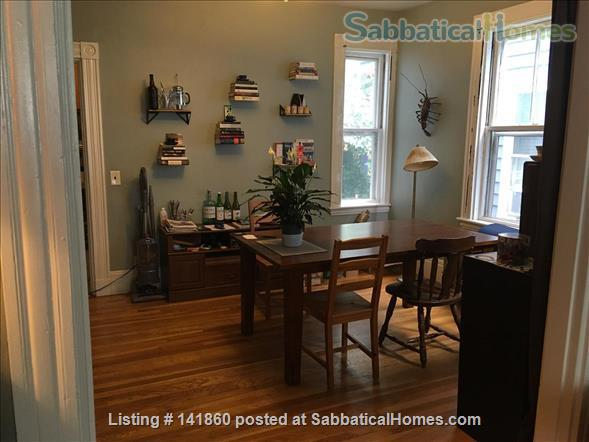 Two bed 1st floor Cambridge apartment sublet $2600 - Jan 1st - April 1st Home Rental in Cambridge, Massachusetts, United States 0