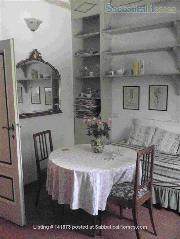Costa S. Giorgio Forte Belvedere nice, quiet flat, garden, WIFI Home Rental in Florence, Toscana, Italy 0