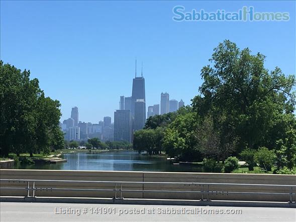 Lovely garden apartment in Chicago's Lincoln Park neighborhood Home Rental in Chicago, Illinois, United States 1