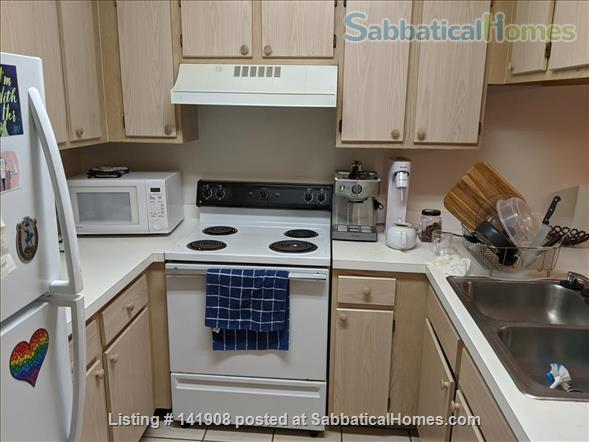 Furnished Apartment for Rent 2BD + OFFICE W SHOPPING NEARBY  Home Rental in Gainesville, Florida, United States 6