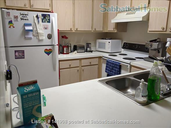 Furnished Apartment for Rent 2BD + OFFICE W SHOPPING NEARBY  Home Rental in Gainesville, Florida, United States 7
