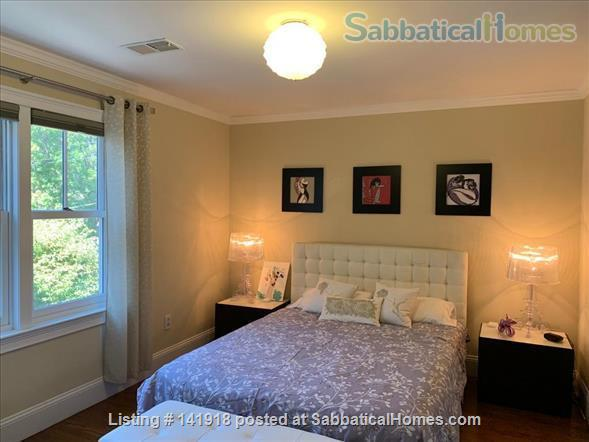 Beautiful & Large Townhouse in Brookline, MA Home Rental in Brookline, Massachusetts, United States 3