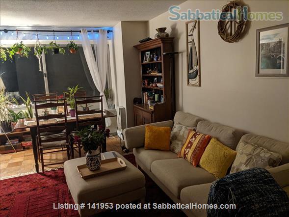 Beautiful condo near American University & Metro Home Rental in Washington, District of Columbia, United States 0