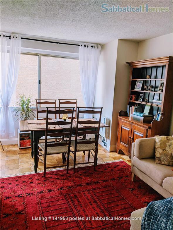 Beautiful condo near American University & Metro Home Rental in Washington, District of Columbia, United States 2