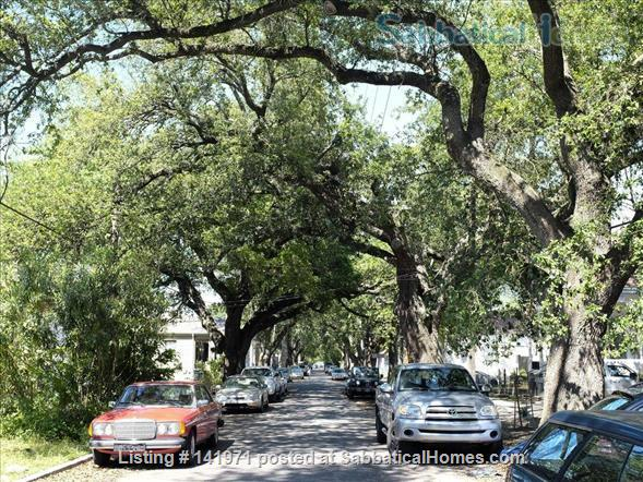 Artistic, Bright Open 1 Bedroom Apt Fully Furnished Oak Tree Lined Street Home Rental in New Orleans 9