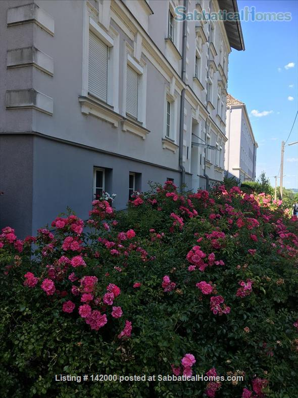 Just renovated , quiet bright 2 room apartment with balcony Home Rental in Linz, Upper Austria, Austria 1