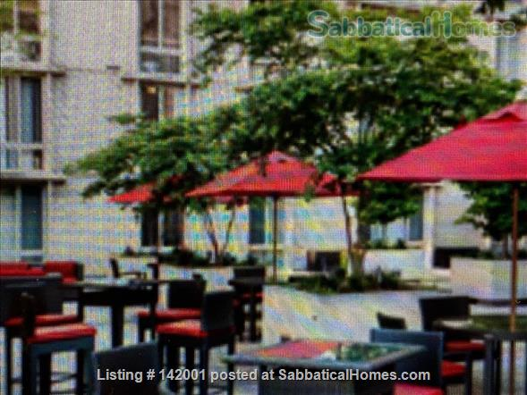 2-bedroom furnished condo Home Rental in Washington, District of Columbia, United States 1