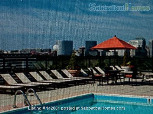 2-bedroom furnished condo Home Rental in Washington, District of Columbia, United States 0