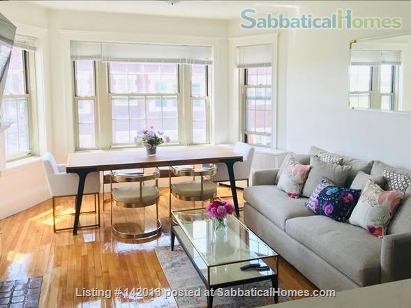 Beautiful and cozy one bedroom apartment steps to Harvard University-AVAILABLE ON DEC & JANUARY Home Rental in Cambridge, Massachusetts, United States 1
