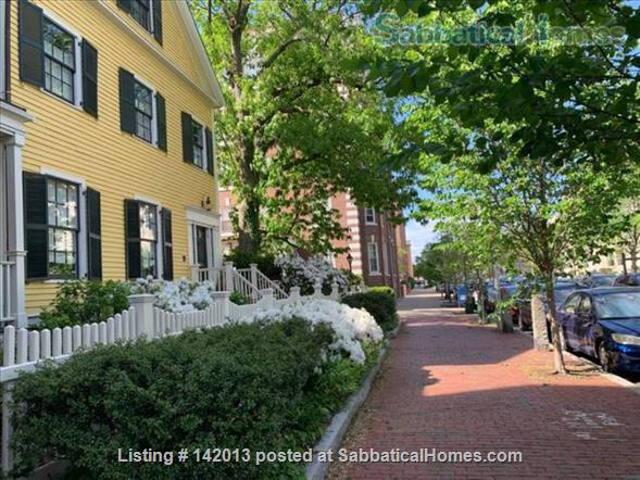 Beautiful and cozy one bedroom apartment steps to Harvard University-AVAILABLE ON DEC & JANUARY Home Rental in Cambridge, Massachusetts, United States 8