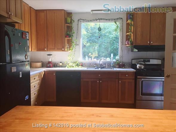 Sweet Sunny Home on  3.5 Acres in Orange County, NC Home Rental in Hillsborough, North Carolina, United States 4