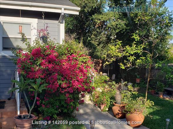 Beautiful Cottage Nestled near San Marino,  Caltech in Pasadena (Granddaddy of them all) Home Rental in Pasadena, California, United States 6