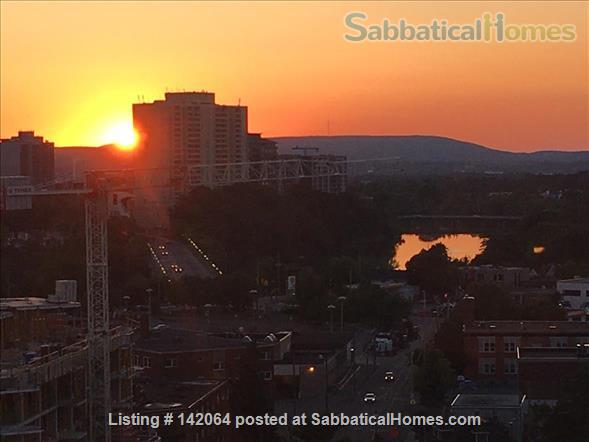 1BR+ Furnished Stylish Upper-Floor Condo with Beautiful View of Ottawa,  Rideau River & Gatineau Hills  - Avail Jan 2021 Home Rental in Ottawa, Ontario, Canada 0