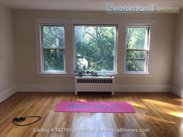 Spacious, light-filled 2BR apartment available Dec 2020 Home Rental in South Hadley, Massachusetts, United States 1