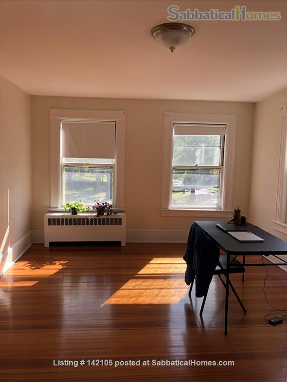 Spacious, light-filled 2BR apartment available Dec 2020 Home Rental in South Hadley, Massachusetts, United States 0