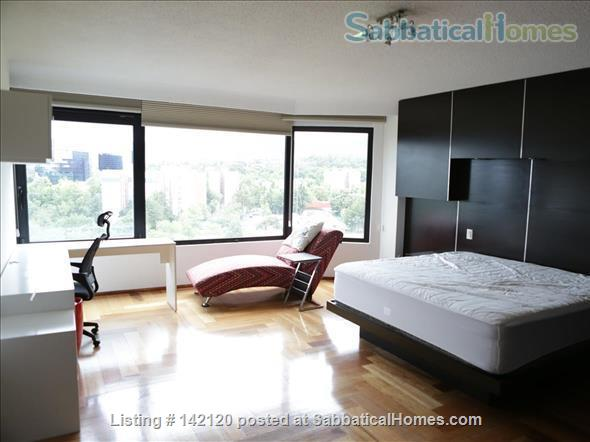 Very spacious, furnished family apartment in Mexico City Home Rental in Ciudad de México, Ciudad de México, Mexico 1