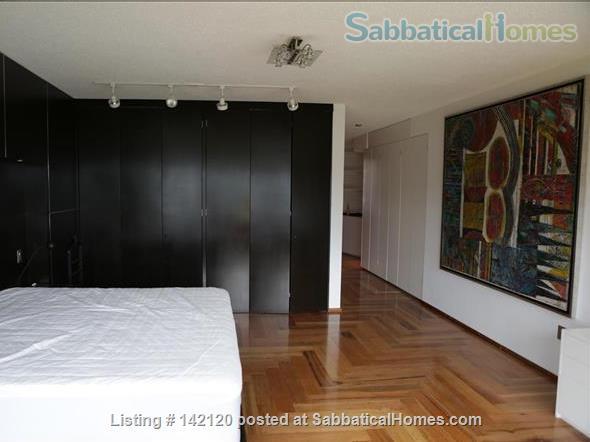 Very spacious, furnished family apartment in Mexico City Home Rental in Ciudad de México, Ciudad de México, Mexico 0