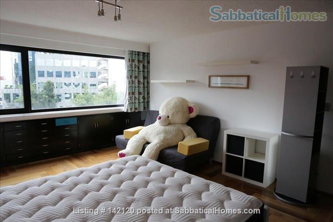 Very spacious, furnished family apartment in Mexico City Home Rental in Ciudad de México, Ciudad de México, Mexico 8