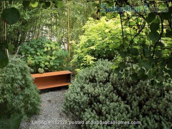 Stylish & Cozy Green Lake Apartment  Home Rental in Seattle, Washington, United States 1