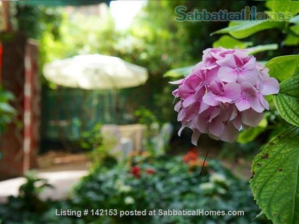 A Cozy Garden Refuge In Handy, Residential Venice Home Rental in Venice 1