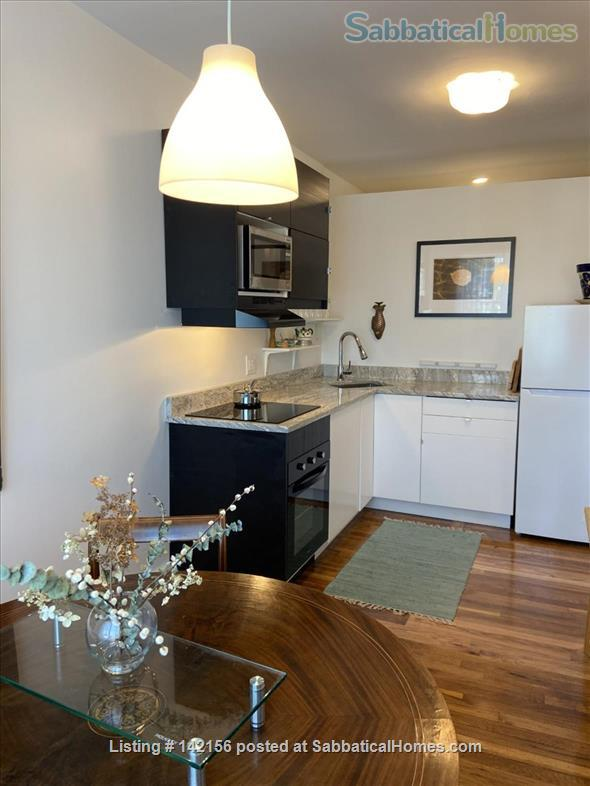 Fully furnished short-term rental Home Rental in Cambridge, Massachusetts, United States 2