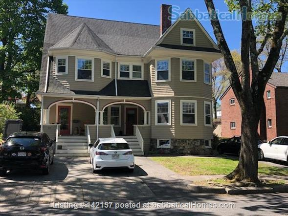 Sunny - Clean 1 br apartment Home Rental in Newton, Massachusetts, United States 1