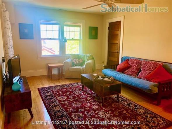 Sunny - Clean 1 br apartment Home Rental in Newton, Massachusetts, United States 2
