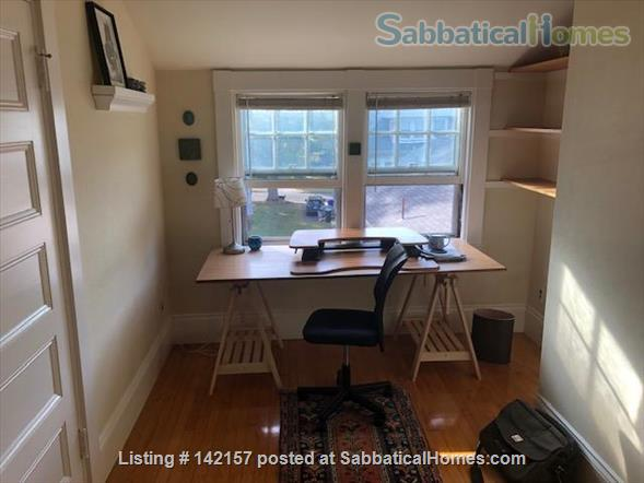 Sunny - Clean 1 br apartment Home Rental in Newton, Massachusetts, United States 3