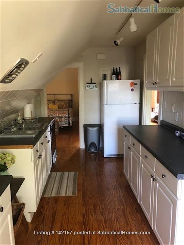 Sunny - Clean 1 br apartment Home Rental in Newton, Massachusetts, United States 6