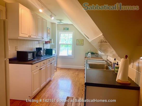 Sunny - Clean 1 br apartment Home Rental in Newton, Massachusetts, United States 7