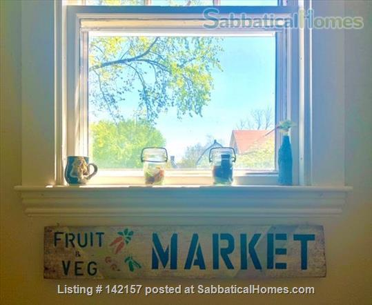 Sunny - Clean 1 br apartment Home Rental in Newton, Massachusetts, United States 8