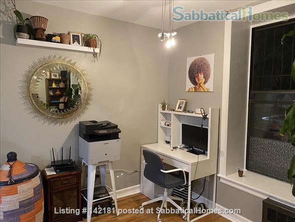 Beautifully furnished and newly renovated large 2 bed apt available  Home Rental in New York, New York, United States 5
