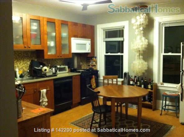 sunny, eclectic condo, close to urban areas, parks, and bike path Home Rental in Boston, Massachusetts, United States 1
