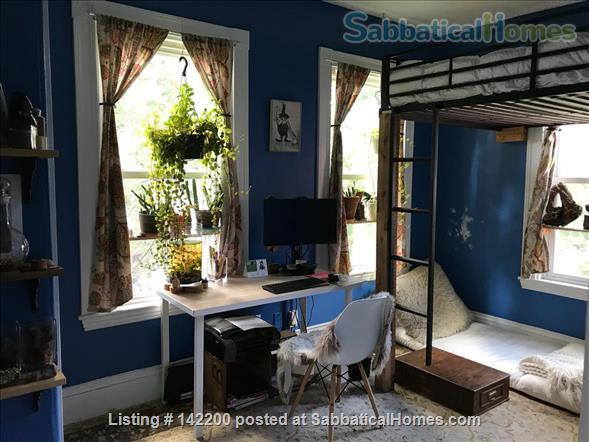 sunny, eclectic condo, close to urban areas, parks, and bike path Home Rental in Boston, Massachusetts, United States 0