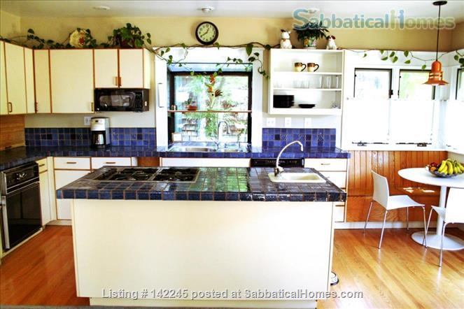 Elmwood: Walk to everything Home Rental in Berkeley, California, United States 1