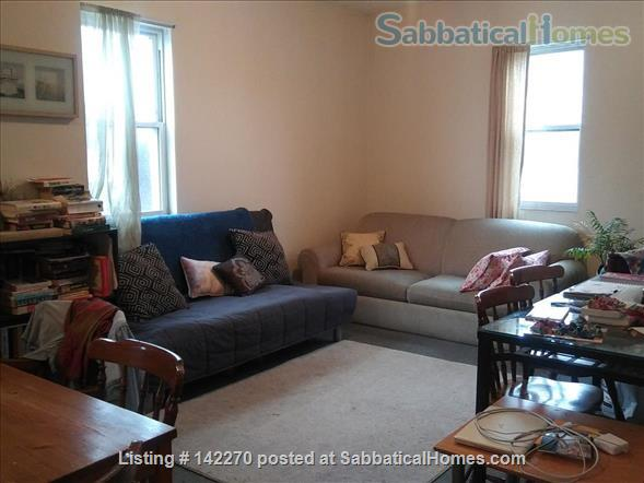 Lovely,  Spacious Bedroom full of Light at the Heart of Union Square, Somerville Home Rental in Somerville, Massachusetts, United States 4