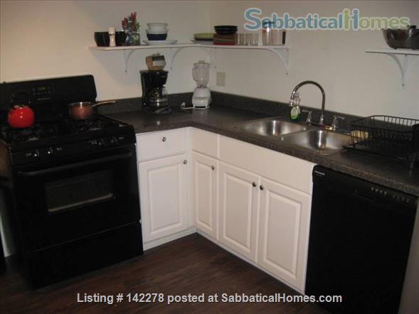 Nice, sunny 1 BR apartment in Evanston, IL Home Rental in Evanston, Illinois, United States 6