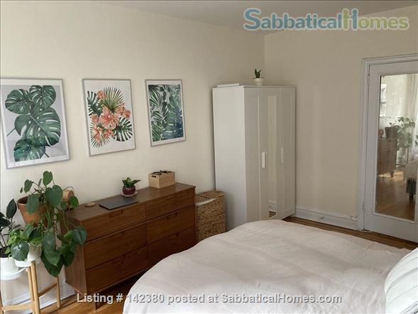 Lovely 1 bed in Hudson Heights, Hudson River views Close to Columbia and Fordham Home Rental in New York, New York, United States 4