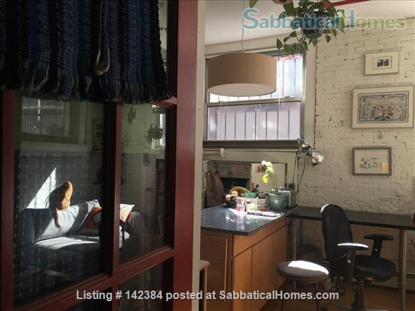 Large, sunny, furnished 1 bedroom in the heart of Boston Home Rental in Boston, Massachusetts, United States 1