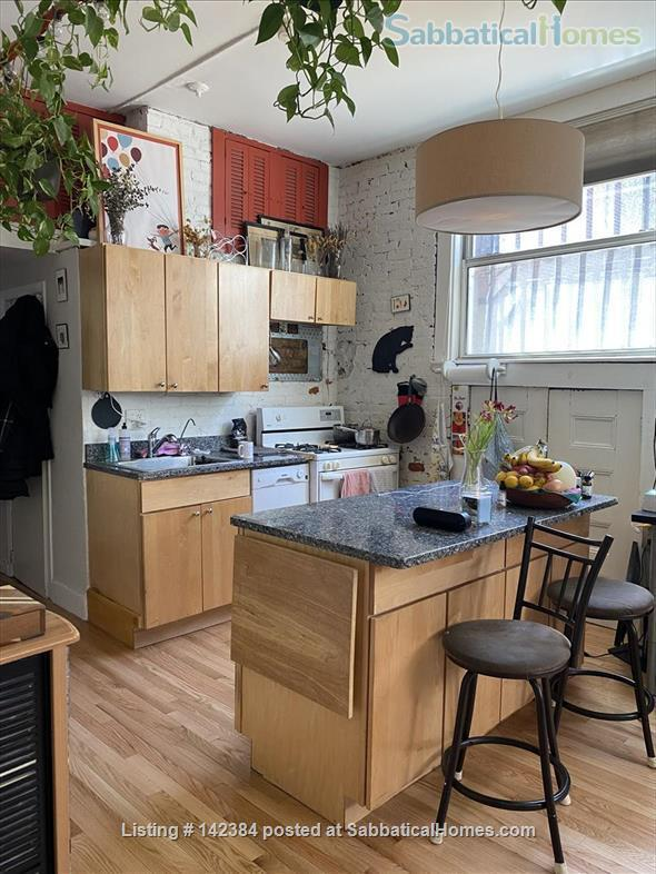 Large, sunny, furnished 1 bedroom in the heart of Boston Home Rental in Boston, Massachusetts, United States 0