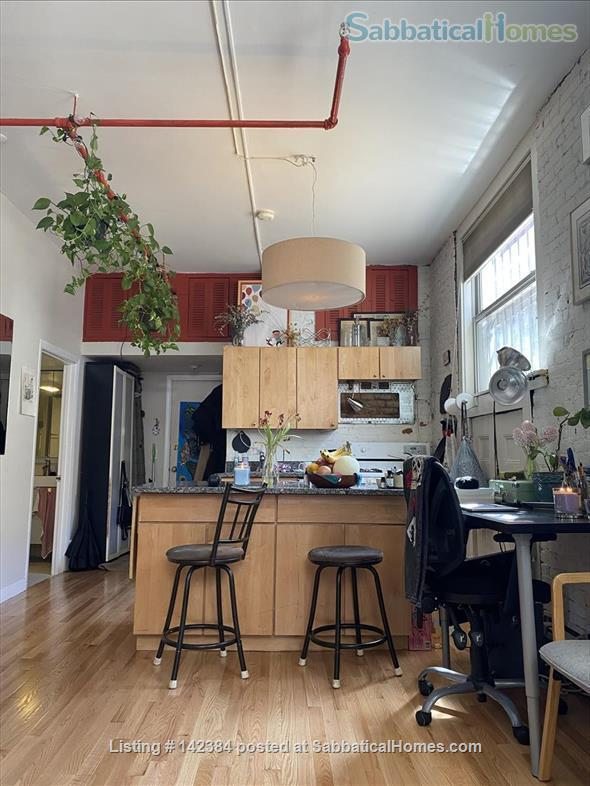 Large, sunny, furnished 1 bedroom in the heart of Boston Home Rental in Boston, Massachusetts, United States 2