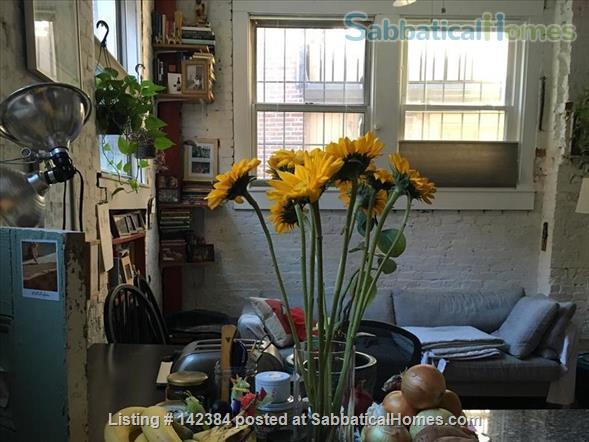 Large, sunny, furnished 1 bedroom in the heart of Boston Home Rental in Boston, Massachusetts, United States 3