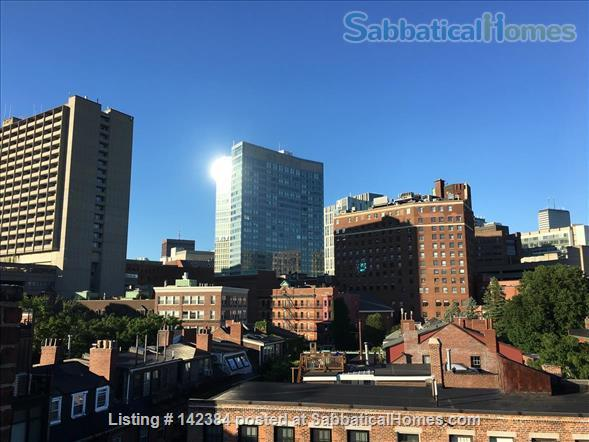 Large, sunny, furnished 1 bedroom in the heart of Boston Home Rental in Boston, Massachusetts, United States 7