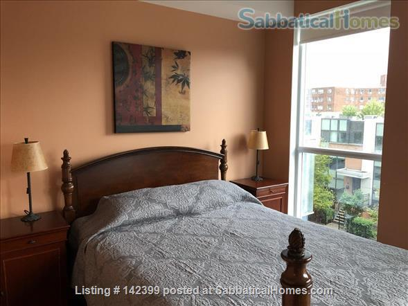 Sunny two-bedroom, two bath condo near downtown Toronto hospitals and universities, owned by Ryerson prof. Home Rental in Toronto, Ontario, Canada 2