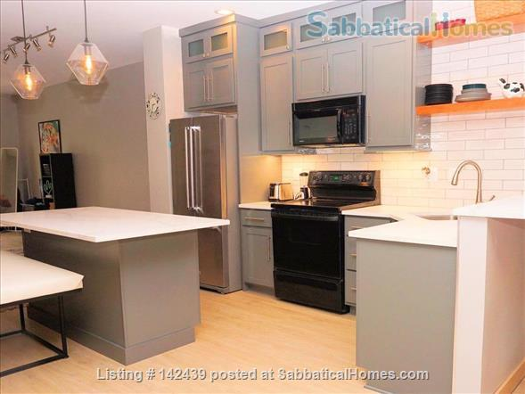Lg. 1 bed/1 bath 2nd Floor Condo near Capitol Square.  Recently renovated Home Rental in Madison, Wisconsin, United States 1